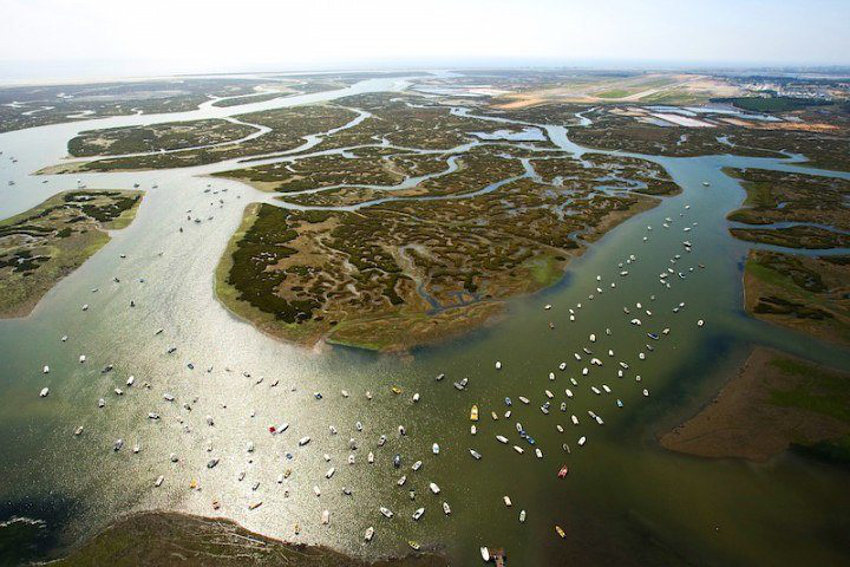 Wonders of Ria Formosa