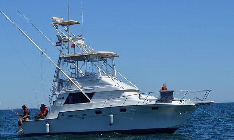 Tuna & shark fishing in Tavira