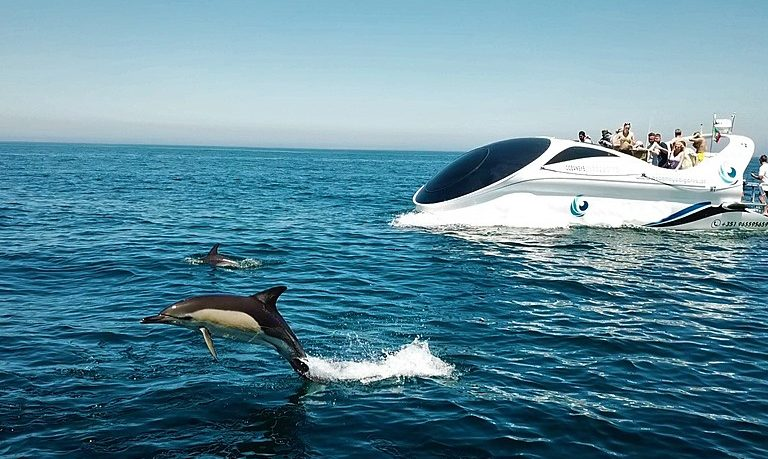 Dolphin and Benagil tour from Albufeira