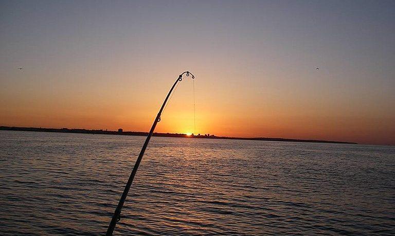 Half day fishing in Lagos